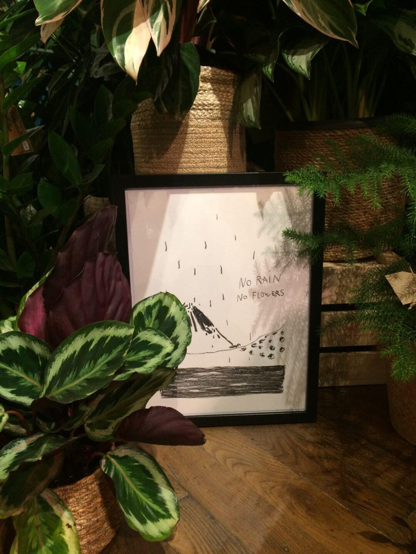 lithographie encadrée encre noir montagne no rain no flowers
